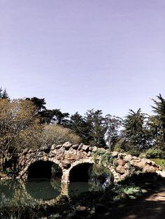 S a n F r a n c i s c o 🌱 //Botanical Garden #sanfrancisco #goldengatepark