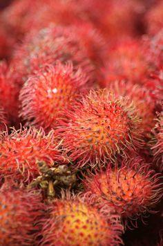 Rambutans are a strange looking fruit, but once you get beyond the covering you have a real treat.