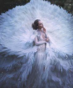 swan by Margarita Kareva on 500px
