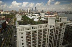 BROOKLYN GRANGE FARM: la granja en tejado más grande del mundo  #Sustentable