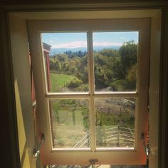 See 41 photos from 423 visitors to Martinborough. Windows, London, Home, Ad Home, Homes, London England, Haus, Ramen, Window