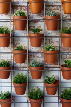 40 Genius DIY Pots for Vertical Garden decorhead com is part of Garden plant pots - The plan of the vertical garden is ideal for adding a soaker hose to every shelf Vertical Garden Plants, Garden Pots, Vertical Gardens, Balcony Garden, Garden Bed, Vertical Garden Design, Terrace, Home And Garden, Hanging Plants