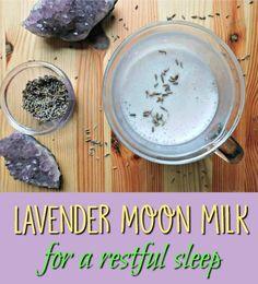 Lavender Moon Milk relaxing nighttime beverage with lavender Lavender Drink, Edible Lavender, Lavender Recipes, Sleep Drink, Sleep Tea, Moon Milk Recipe, Milk Tea Recipes, Smoothie Drinks, Smoothies