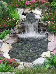 35 the best garden pond landscaping ideas you must have how to add fish to a backyard garden pond Backyard Water Feature, Ponds Backyard, Backyard Ideas, Garden Ponds, Diy Garden, Indoor Garden, Garden Bed, Dream Garden, Contemporary Garden Design