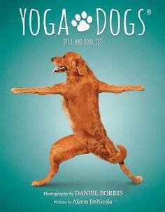 Yoga Dogs Deck & Book Set