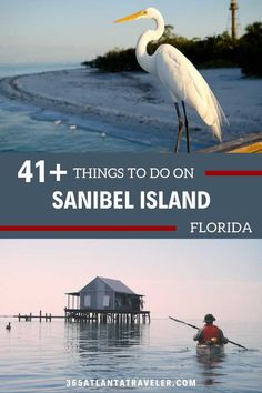 Sanibel Island on the west coast of Florida is a shellers paradise, but there is… Visit Florida, Florida Vacation, Florida Travel, Florida Beaches, Travel Usa, Destin Florida, Clearwater Florida, Naples Florida, Beach Travel
