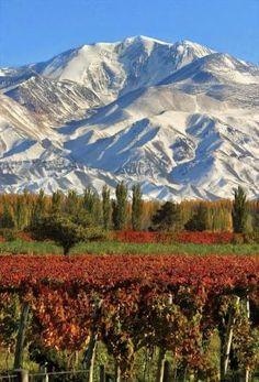 Mendoza - Argentina by Eva0707