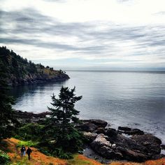 Lime Kiln State Park on San Juan Island - you cannot visit this island without a stop here! I've seen whales from the shore several times.
