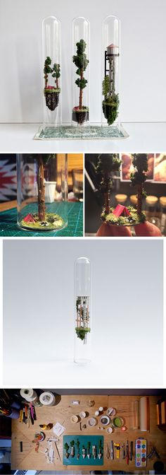 New Miniature Dwellings Suspended Inside Test Tubes by Rosa de Jong Viviendas, árboles miniaturas dentro de tubos de ensayo Mini Terrarium, Terrariums, Art Projects, Projects To Try, Theme Harry Potter, Diy And Crafts, Arts And Crafts, Colossal Art, Test Tubes