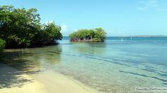 Gilligan's Island - Guilligan Island - Cayo Aurora - Guanica | Puerto Rico Day Trips Travel Guide
