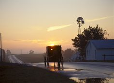 A sunset ride in Ohio's Amish Country. CLICK HERE for more about Ohio's Amish Country at www.OACountry.com! #Amish #Ohio #Tourism (Doyle Yoder photo)