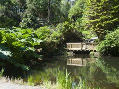 Botanical Gardens at Kells, Ring of Kerry, County Kerry, Munster, Republic of Ireland, Europe