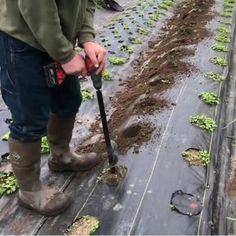 Super fast and easy gardening! Garden Projects, Garden Tools, Garden Ideas, Spiral Shape, Easy Garden, Indoor Garden, Replant, Planting Bulbs, Types Of Soil