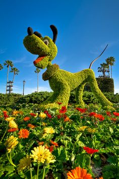Epcot - Who Let The Dog Out? by SpreadTheMagic, via Flickr