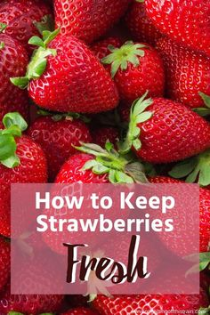 Do you struggle with figuring out how to keep your strawberries fresh? Here's a method to make them last longer to avoid food waste! Family Meal Planning, Family Meals, Healthy Snacks, Healthy Eating, Healthy Recipes, Kitchen Cheat Sheets, Save Money On Groceries, Food Hacks, Food Tips