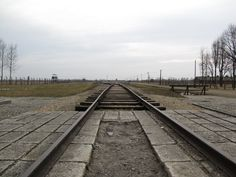 while in Poland in 2010 Alycia and I went to Auschwitz. this is the rail line leading into the death camp