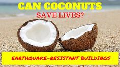 Can Coconuts Save Lives? Earthquake-Resistant Buildings