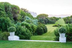 How long do you think it would take to mow this strip of lawn? We just love this Marlborough garden in our January issue #nzhouseandgarden…