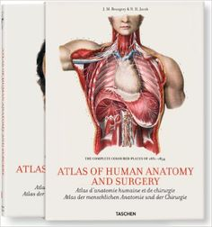 Bourgery: Atlas of Anatomy and Surgery, 2 Vol.: Jean-Marie Le Minor, Henri Sick: 9783836531061: Amazon.com: Books