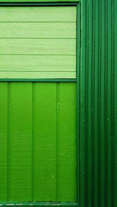Green by Sunny Yoo