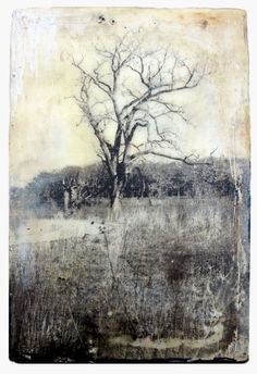 Landscape 1 is an encaustic and mixed media painting. The artist is Bridgette Guerzon Mills.
