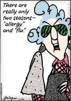 """Maxine: There are really only two seasons - """"allergy"""" and """"flu. Aunty Acid, Feeling Sick, Story Of My Life, The Funny, Funny Lady, Laugh Out Loud, True Stories, Make Me Smile, My Idol"""