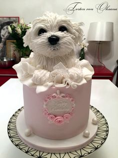 Maltese coming out of cake