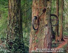 A Boy went to war in 1914 - left his bike chained to a tree.(18) Facebook