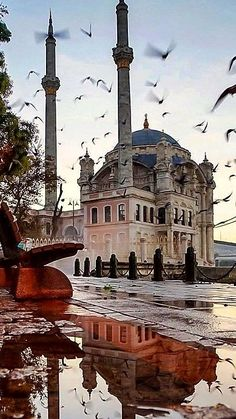 Stanbul turkey istanbul trkeiurlaub turkey 10 days in turkey travel itinerary tips Disney Vacation Deals, Florida Vacation Deals, Last Minute Vacation Deals, Vegas Vacation, Istanbul City, Istanbul Travel, Beautiful Mosques, Islamic Architecture, Turkey Travel