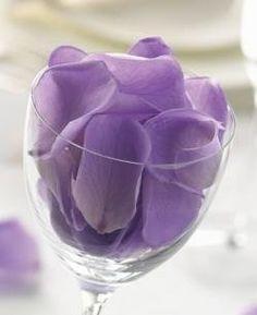 Lilac Preserved Rose Petals