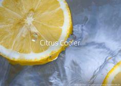Rezept: Citrus Cooler - erfrischend. Alle Informationen: Zutaten, Garnitur, Glas, Zubereitung, ...