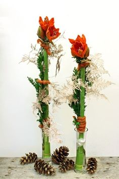 A popular flower right now. Both in pot and as here in bouquet .- A popular flower right now. Both in pot and as here in bouquets. Champagne plum and a green twig to do the trick. Right now we have … - Christmas Flower Decorations, Christmas Flowers, Christmas Wreaths, Art Floral Noel, Arte Floral, Fake Flower Arrangements, Winter Bouquet, Popular Flowers, Garden Bulbs