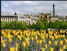 April in Paris by Barbara Eggermann London History, April Showers, Tour Eiffel, City Lights, Dolores Park, Tours, France, Mansions, House Styles