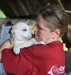 66 dogs & 1 big promise: how @RedRover & PetSmart Charities helped save #pets in distress (by @RedRoverBeth)
