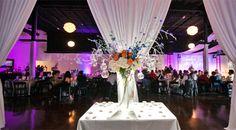 1010 Collins | Reception Hall Arlington TX | My Dallas Quinceanera