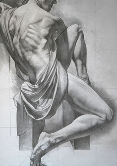 Sabin Howard Anatomy webinars