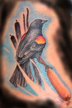 red-winged black bird tattoo by Galen Luker: TattooNOW : Respect Tattoo, Red Wing Blackbird, Black Bird Tattoo, Black Wings, I Tattoo, Tattoo Artists, Watercolor Tattoo, Orchids, Birds