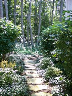 Traditional Landscape Paths Design, Pictures, Remodel, Decor and Ideas - page 17