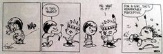 """From """"The Authoritative Calvin and Hobbes: Yukon Ho! and Weirdos from Another Planet"""""""