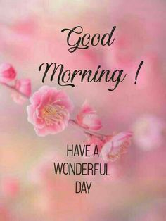 Good Morning Beautiful Pictures, Good Morning Images Flowers, Good Morning Picture, Morning Pictures, Beautiful Good Morning Wishes, Good Morning Texts, Good Morning Good Night, Good Morning Quotes, Good Morning Greeting Cards