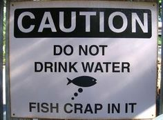 The fish have crapped in your water . . . LOL!