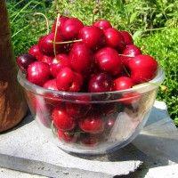 Cum recunoaştem mugurii de rod la măr   Paradis Verde Black Magic, Cherry, Paradis, Food, Plant, Essen, Meals, Prunus, Yemek