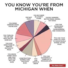 I don't think this should be a pie chart Michigan Travel, State Of Michigan, Detroit Michigan, Northern Michigan, Michigan Accent, Michigan Quotes, The Mitten State, Buy Beer, Upper Peninsula