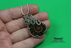 Wire Wrap Pendant. Ammonite fossil slice Madagascar. Wire from