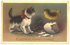 #Antique Easter Greetings Postcard Kitten Cat Chick Easter Egg by SandyCreekCollectables for $6.00