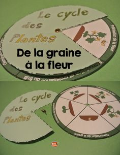 French: Le cycle des plantes en Science // Interactive Notebook