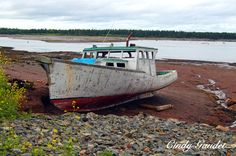 An abandoned boat in St Andrew's, NB Historical Landmarks, St Andrews, New Brunswick, Shipwreck, Whale Watching, The Province, Retirement, Places Ive Been, Abandoned