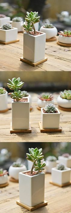 SUN-E Modern White Ceramic Succulent Planter Pots / Mini Flower Plant Containers with Bamboo Saucers (High square)
