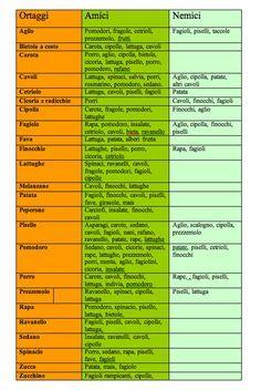 Tabella consociazioni Ark, Vegetable Garden, Outdoor Gardens, Plants, Garden Ideas, Gardening, Green, Gardens, Vegetables Garden
