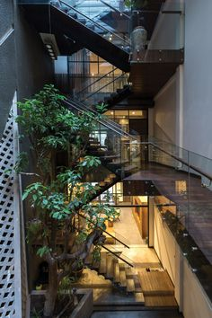 nhà kí ức giữa lòng Hà Nội The house is in the heart of Hanoi memories Door Design Interior, Interior Garden, Exterior Design, Interior Designing, Design Interiors, Sustainable Architecture, Interior Architecture, Kerala Architecture, Seattle Architecture